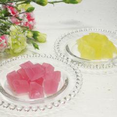 ぶどう氷(ぶどう・れもん)<br>各480円(税込)